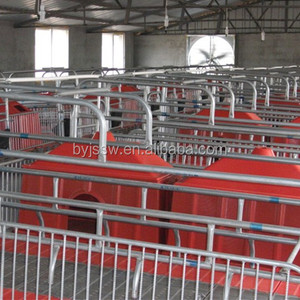 Pig Farming Equipment For Pig Farrow Crates