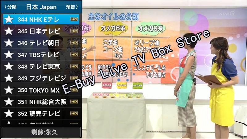 Adult Japanese Tv