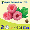 Nature Raspberry Powder for Weight Loss