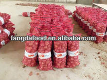 Type of fresh red onion/yellow onion for sales