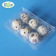 Plastic Quail Egg Tray Egg Carton Low Price With PET Material