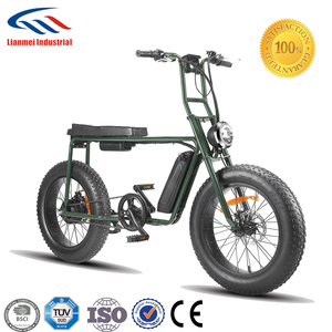 two people unsed e-bike from China with fat tire