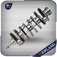 Cast Iron or Forged Cranks for Nissan BD30 Crankshaft