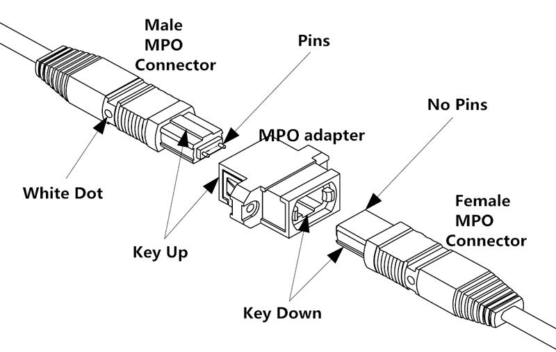 12 Core 24 Core Singlemode Multimode MTP MPO-LC/SC/FC/ST3