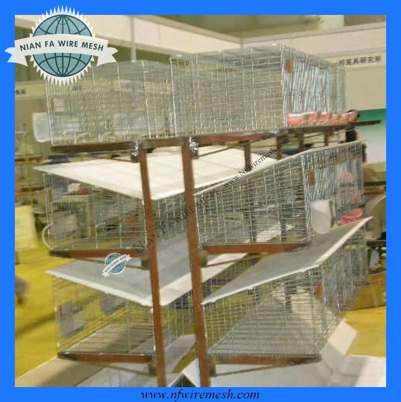 Finden Sie Hohe Qualität Kaninchenkäfig Für Das Labor Hersteller und ...