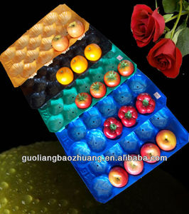 China Gold Suplier/EPS Foam/PP/Plastic Fruit Tray