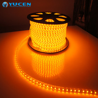 Best Price Shenzhen LED flexible Light SMD3528 Waterproof outdoor LED Strip Light