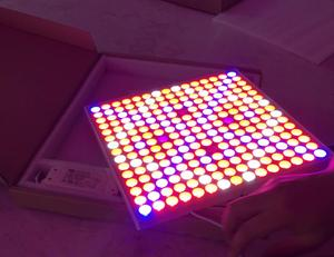 Chinese Suppliers Ultra Thin Full Spectrum 45W Panel LED Grow Light for Greenhouse