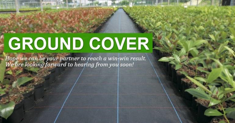 Mulch Film Ground Cover Biodegradable Weed Mat Roll Garden Matting