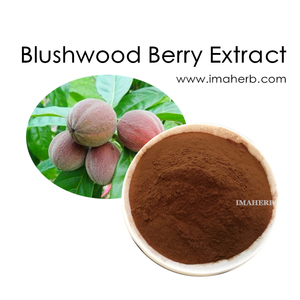 Blushwood Berry Extract, Blushwood Berry Extract Suppliers and