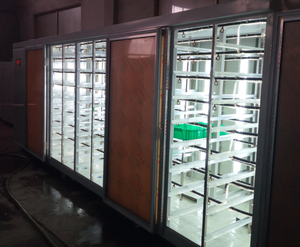 large capacity high efficient hydroponic fodder growing systems for sale