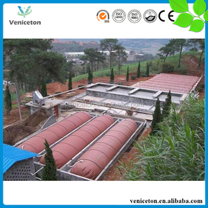 China Veniceton biogas generator project biogas to electricity project in ethiopia