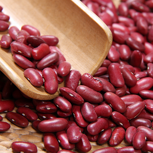 Wholesale Red Kidney Bean with Double Polished