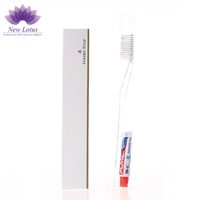 Wholesale Cheap Dental Kit Disposable Hotel Toothbrush And Toothpaste