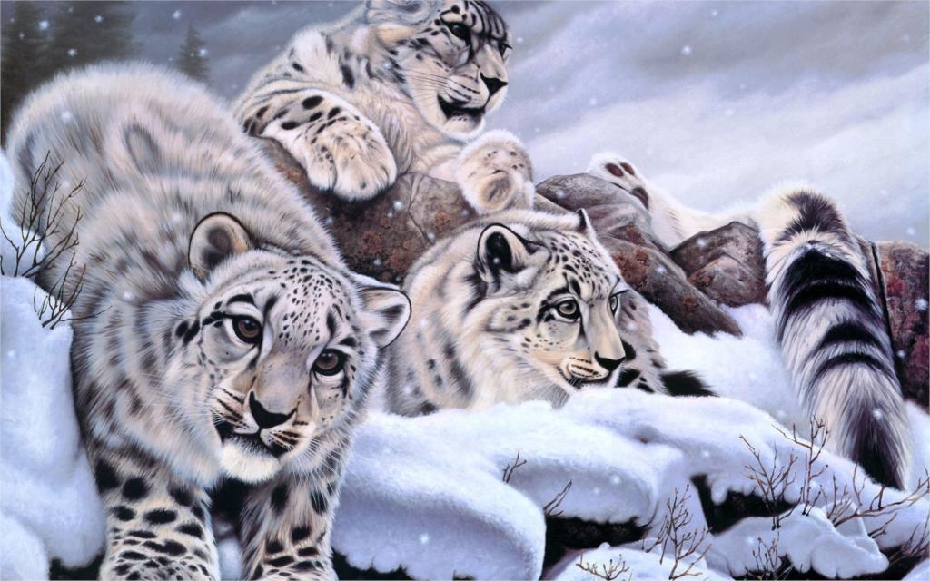 baby snow leopard <font><b>winter</b></font> <font><b>Home</b></font> <font><b>Decoration</b></font> Canvas Poster Print