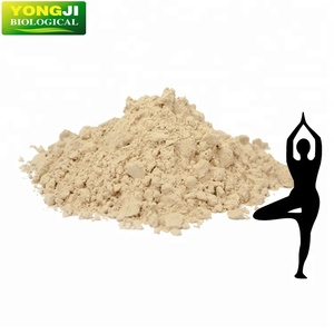 Plant based organic rice protein sprouted organic brown rice protein powder