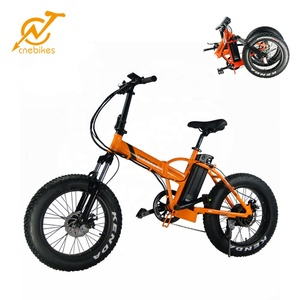 2019 Newest Electric Bike Folding Electric bicycle On Sale