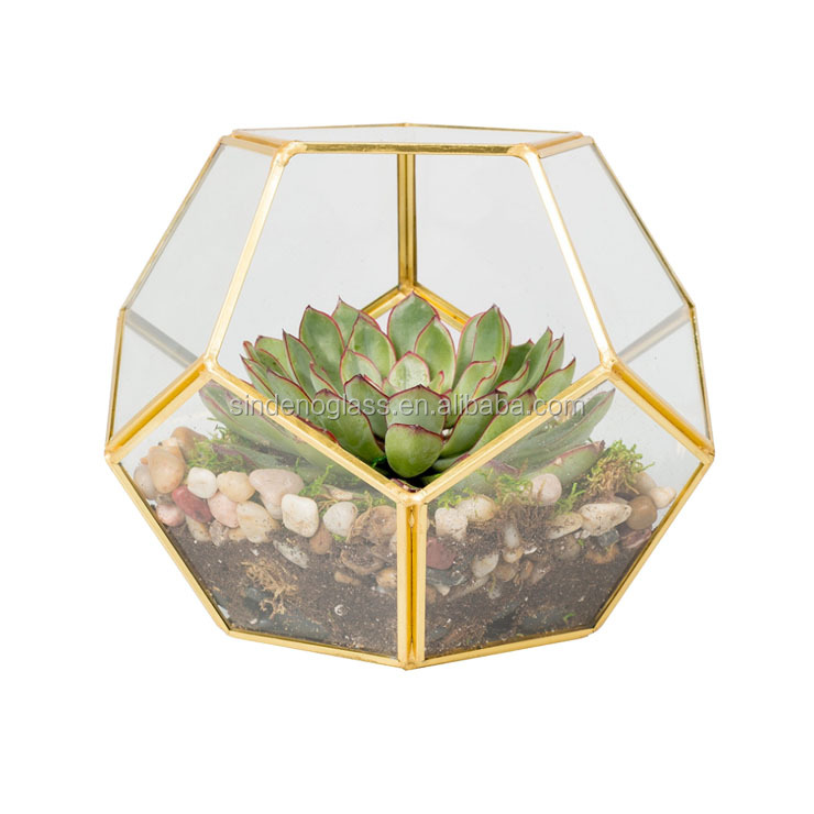 Geometric Copper Terrarium Round Glass Vase Black Golden Glass House Plant Terrarium