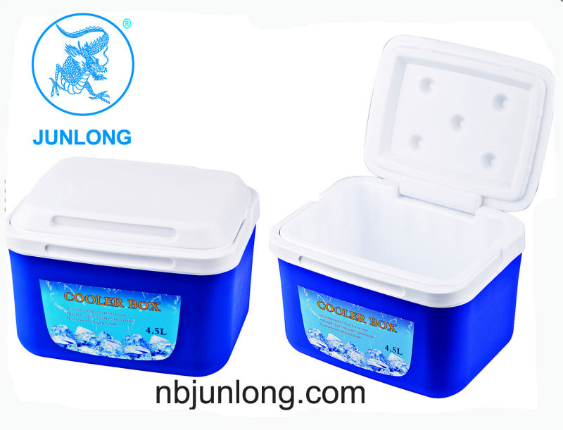 Small Ice Box 5l Cooler Beautiful Storage Fish Product On Alibaba