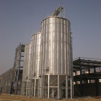 Stainless Steel/lCarbon Steel Silo for Grain and Flour
