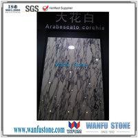 New Product Arabescato Corchia White polished marble tile/Classical Vein Arabescato Corchia Shown on 2015 Xiamen Stone Fair
