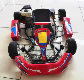 1000w Kids Use Mini Electric Racing Go Kart 90cc Atv For