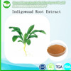 100% Natural Radix Isatidis /Indigowoad root extract powder