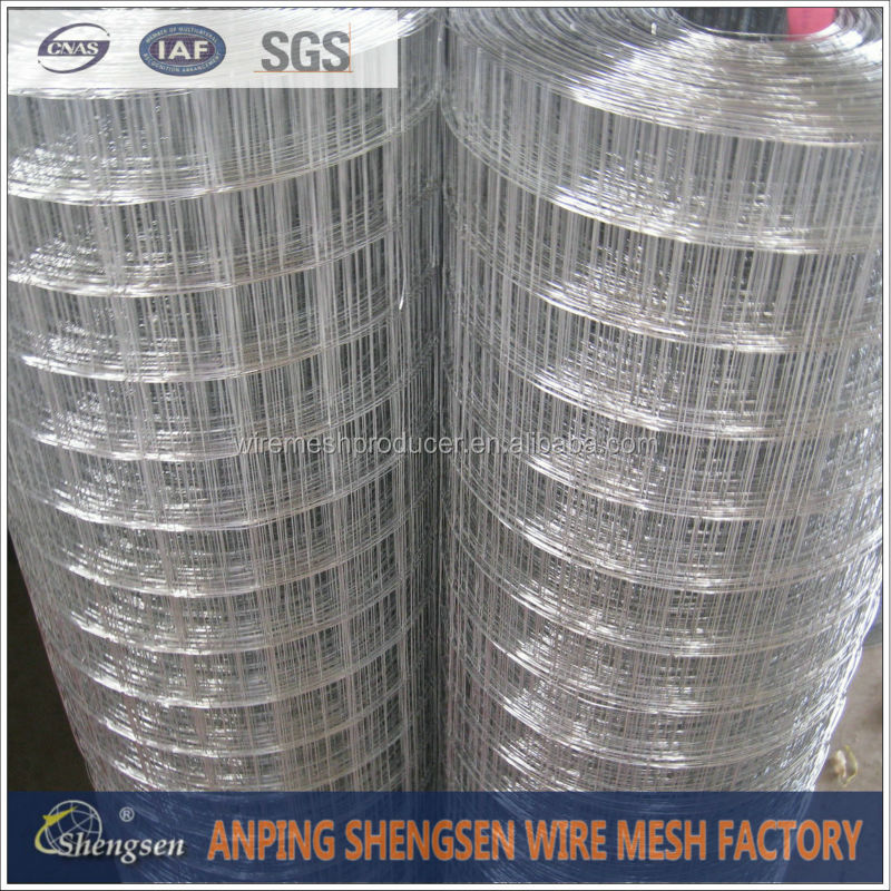 "electric square grid 3/4""inch galvanized welded wire mesh"