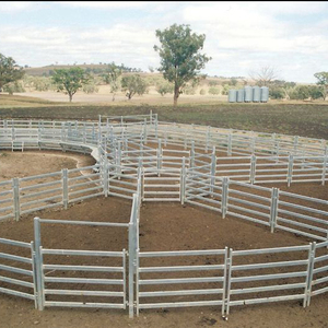 Horse Corral Panel/cattle fencing panels/cattle fence factory