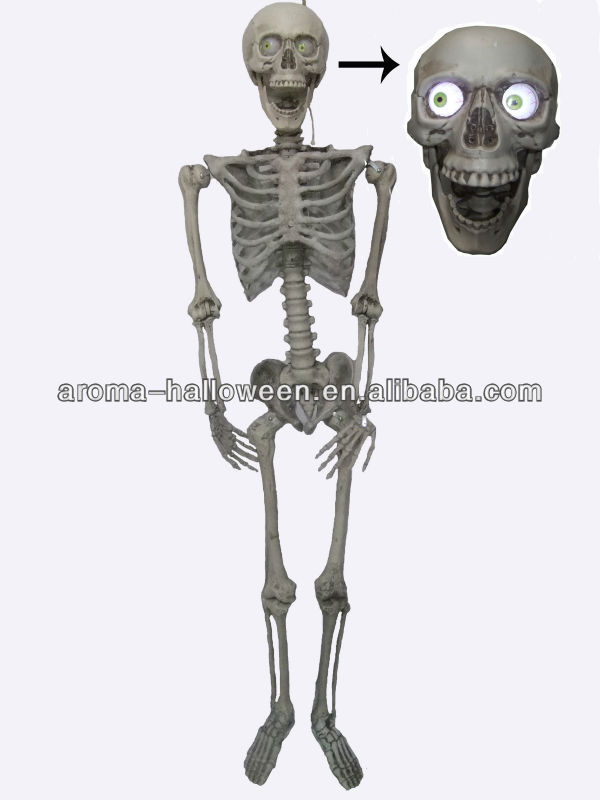 Halloween Life Size Cheap Plastic Skeletons - Buy Cheap Plastic ...