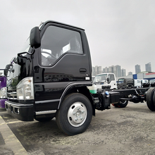 China Isuzu 4x2 mini cargo trucks with light chassis for sale