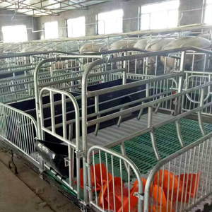 New Design Customized Piggery Farming Equipment Pig Incubator Farrowing Crate From Hengyin