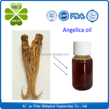 Best quality pure natural Angelica root extract essential oil