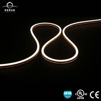 12V 24V 110V 240V Mini Colorful Flexible Led Neon Strip Light Waterproof IP67