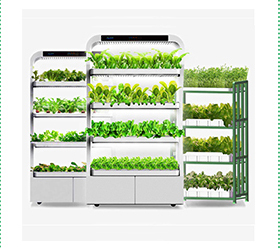 Hydro Indoor Auto Grow System Wholesale, System Suppliers