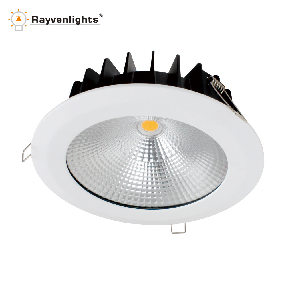 Özel kapalı IP65 tavan led ışık 18 w led 225mm downlight
