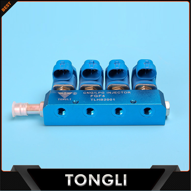 NEW LPG/CNG nozzles common rail injector parts