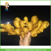 Buyer of dry ginger from Chinese suppliers