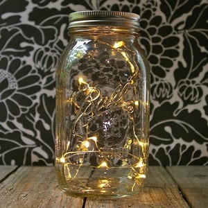 Factory wholesale solar power firefly in jar sting light