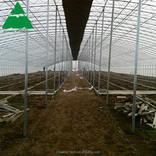 agriculture green house, plastic film multi span greenhouse