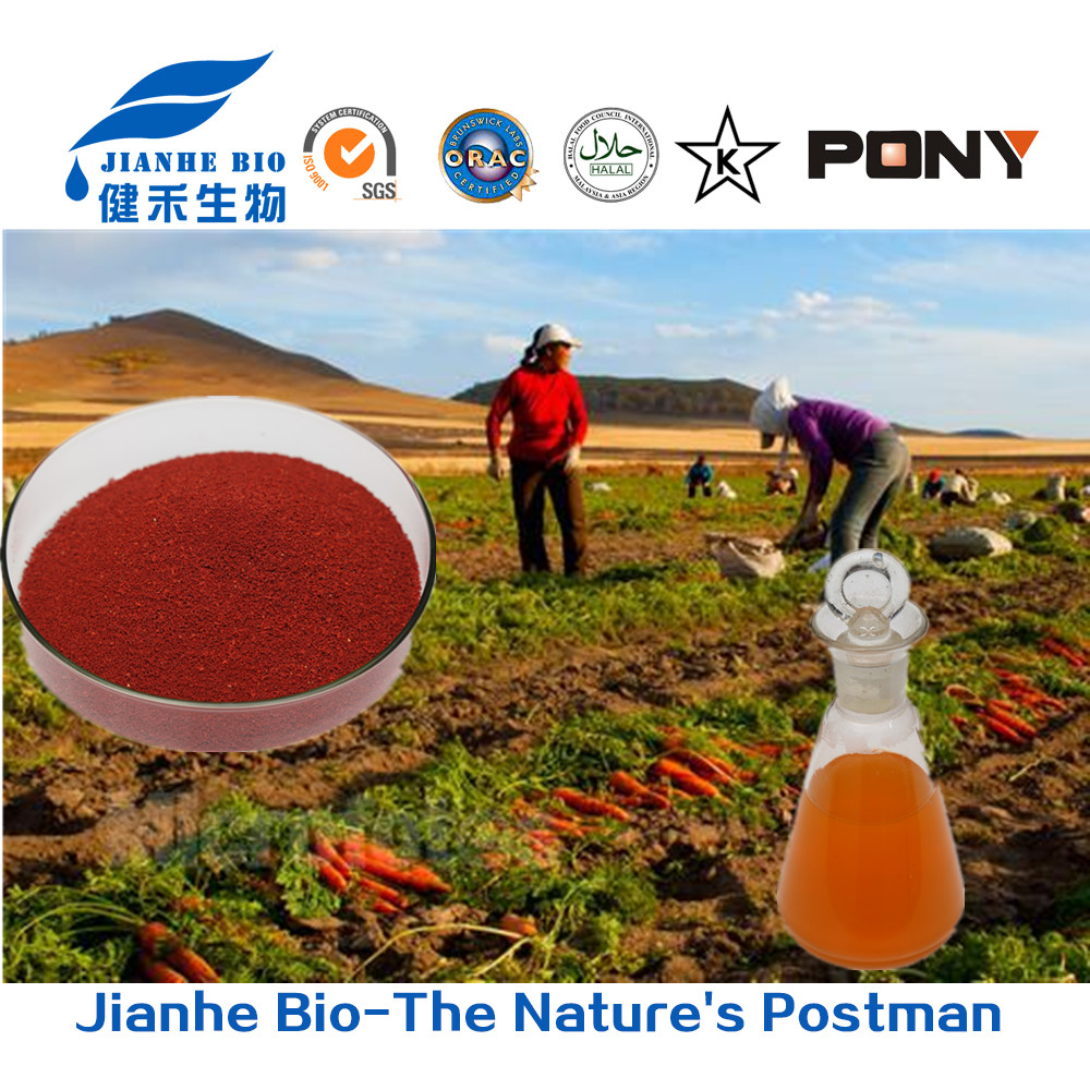 Healthy natural beta carotene edible compound orange food color for eye protecting