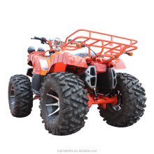 125cc utv aluminium alloy electric atv atv 250cc 4x4 quad