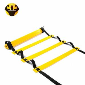 Adjustable Rope Quick Flat Rung Speed Ladder Double Agility Ladder