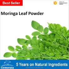 Best Selling 100% Pure Moringa Leaf Powder with Abundant Ready Stock