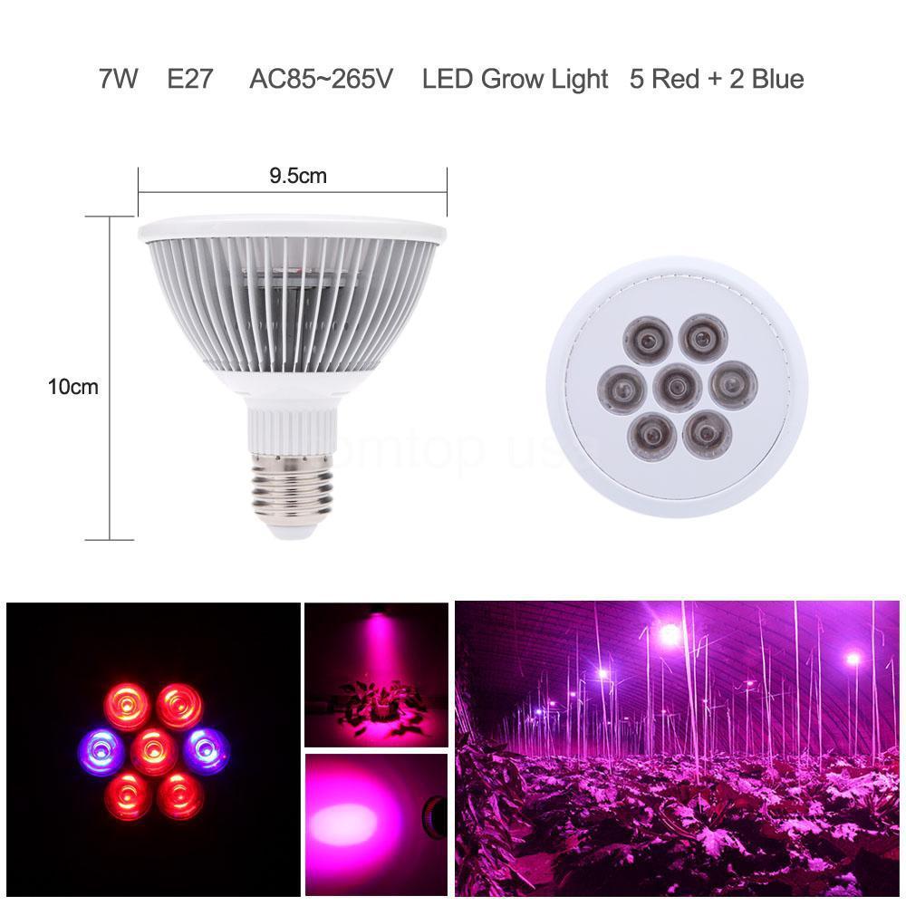 E27 7w Red Blue Par30 Led Plant Lamp Hydroponic Grow Light