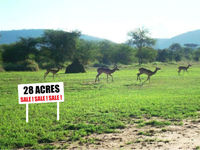 Agricultural Ranch For Sale