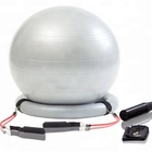 fitness ball chair/dildo yoga ball/donut gym ball