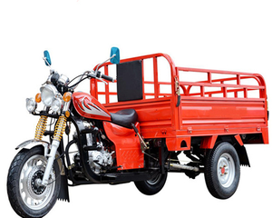 FL150ZH-C1 FULL LUCK China Quality 150CC 3 wheel Cargo Tricycle with big side cover