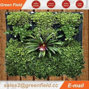 Indoor Watering System Vertical Garden