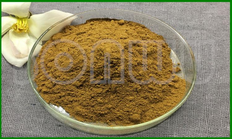 CAS 90045-36-6 24 % Ginkgetin ginko biloba extract